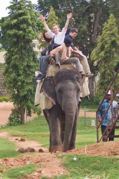 1 Global India Elephant Chris Huberts